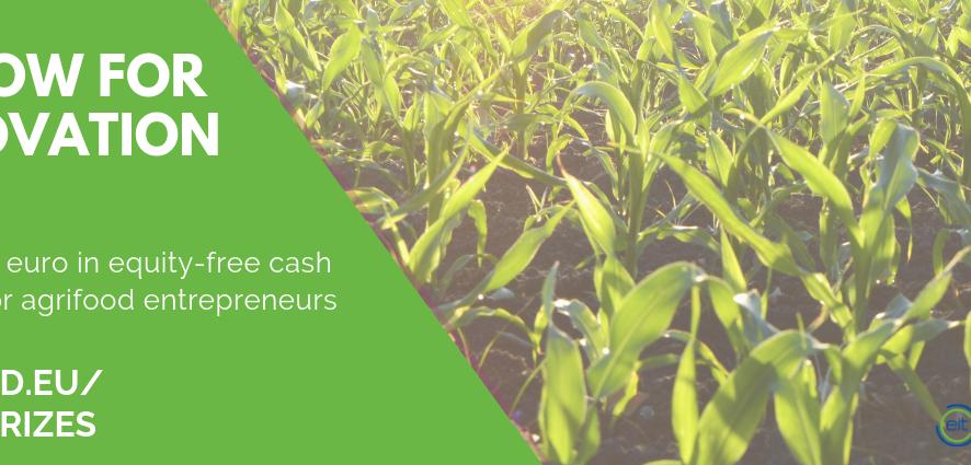 Võida kuni 10 000€ omakapitalivaba rahastust toidusektori muutmiseks läbi EIT Food Innovation Grants Scheme'i